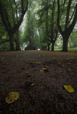 Die ersten Herbsttage
